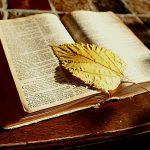 bible, read, book